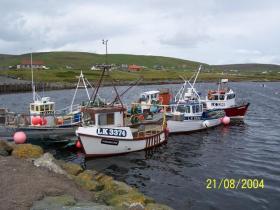 Herring fishing vessels at Aithsvoe pier, Cunningsburgh